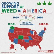CannabisNews1
