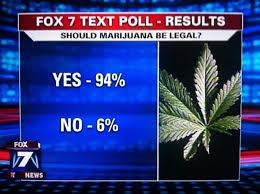 CannabisNews3